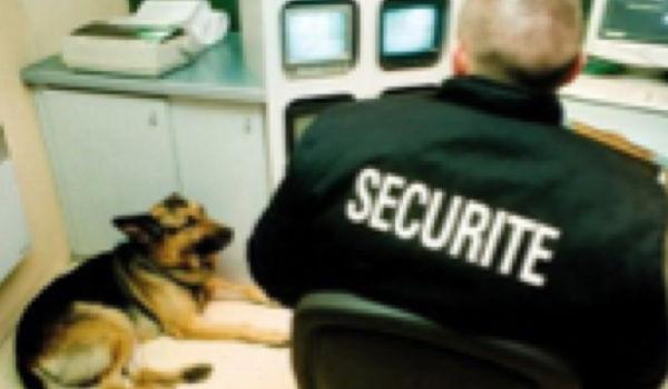 i2T Multiservices : sécurité